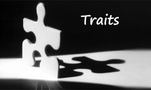 Personality Traits to succeed in business