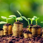 BEST AGRICULTURAL BUSINESS TO START IN NIGERIA