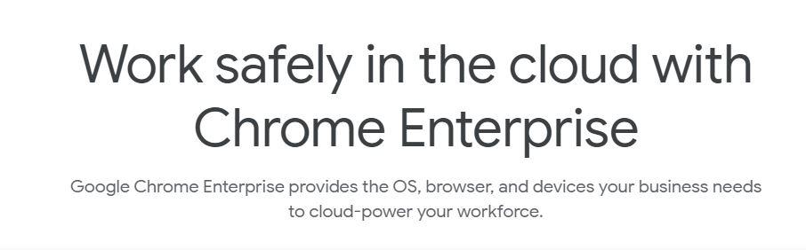 Google Chrome Enterprise Browser