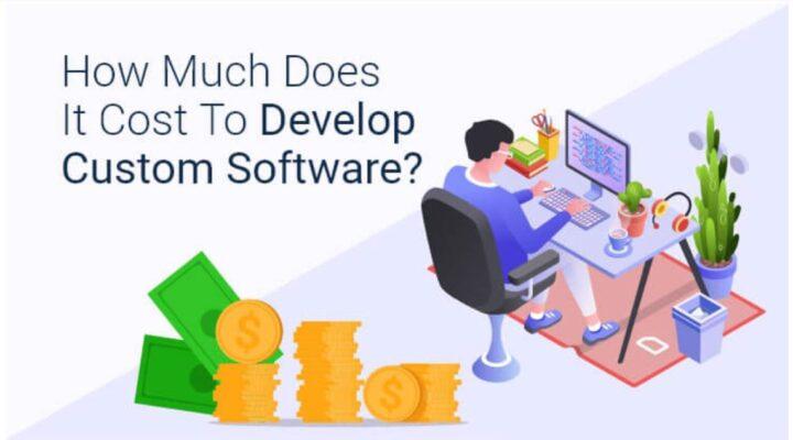 Cost of Custom Software Development, Custom Software Development